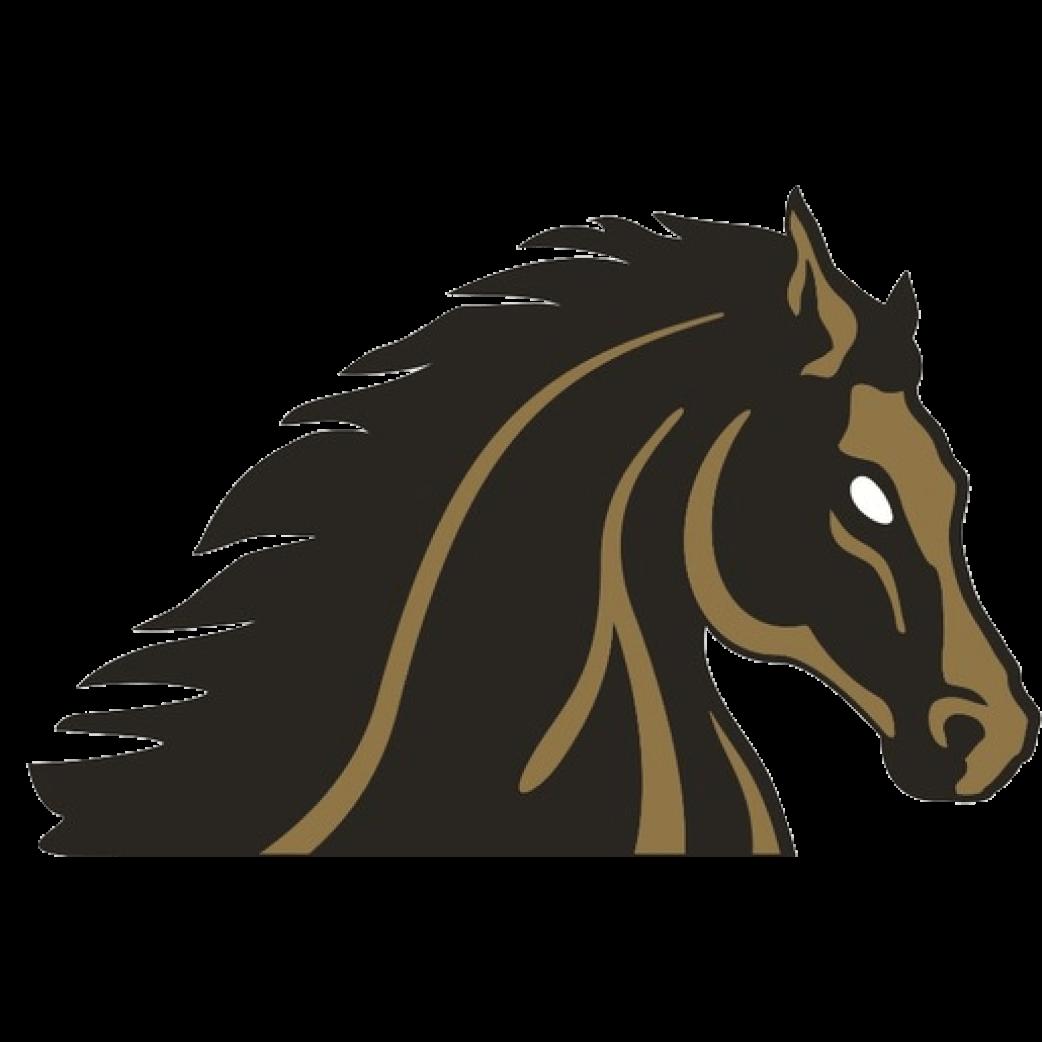 SJDC logo