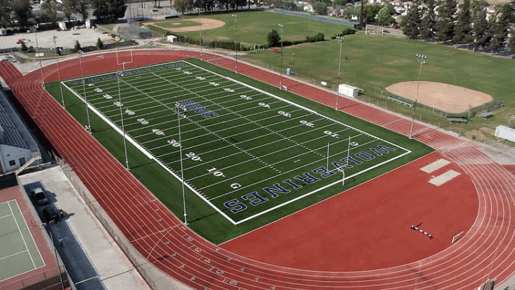 Wolverines Track and Field