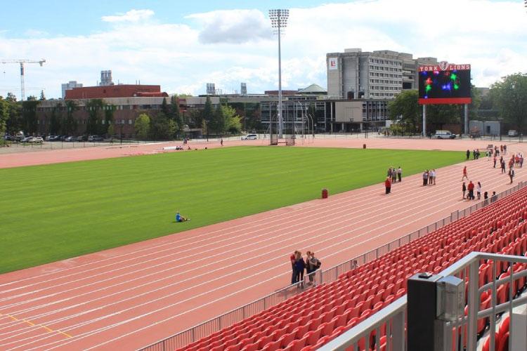 York Stadium (photo courtesy of York University Athletics & Recreation)